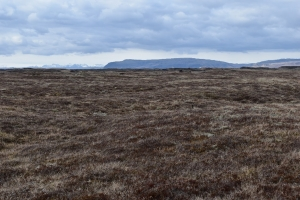 Þurrlendi í Landbroti